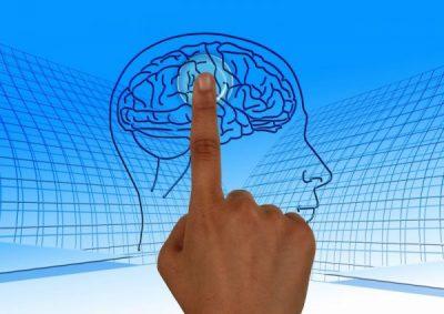 brain-770044_1280